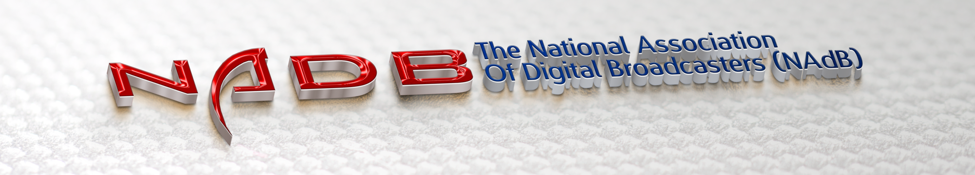 National Association of Digital Broadcasters Logo
